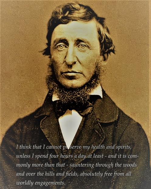 thoreau walking quote
