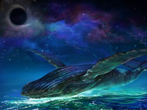 whale and wormhole